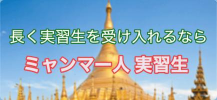 ミャンマー人実習生、実習生